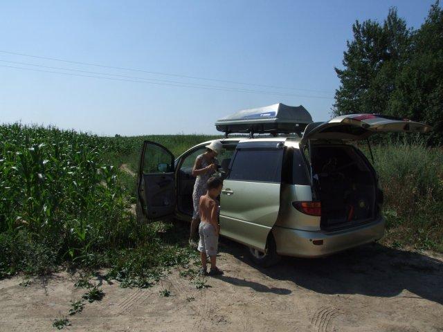 Привал на кукурузном поле